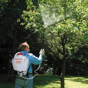 Chapin 61800 backpack sprayer review